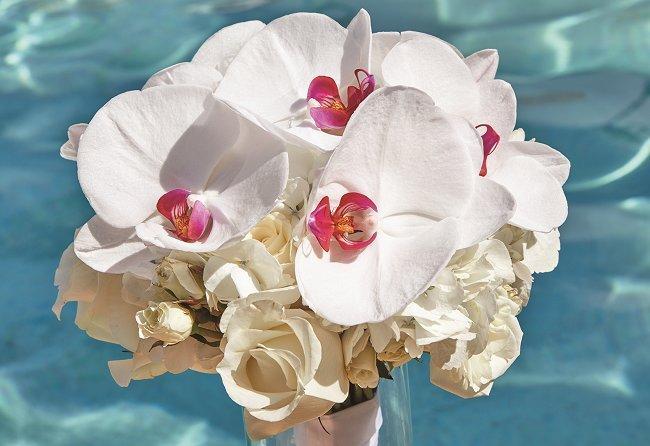Aruba Wedding bouquet by Shar Chatram flowershop: White roses, hydrangeas, phalaenopsis orchids