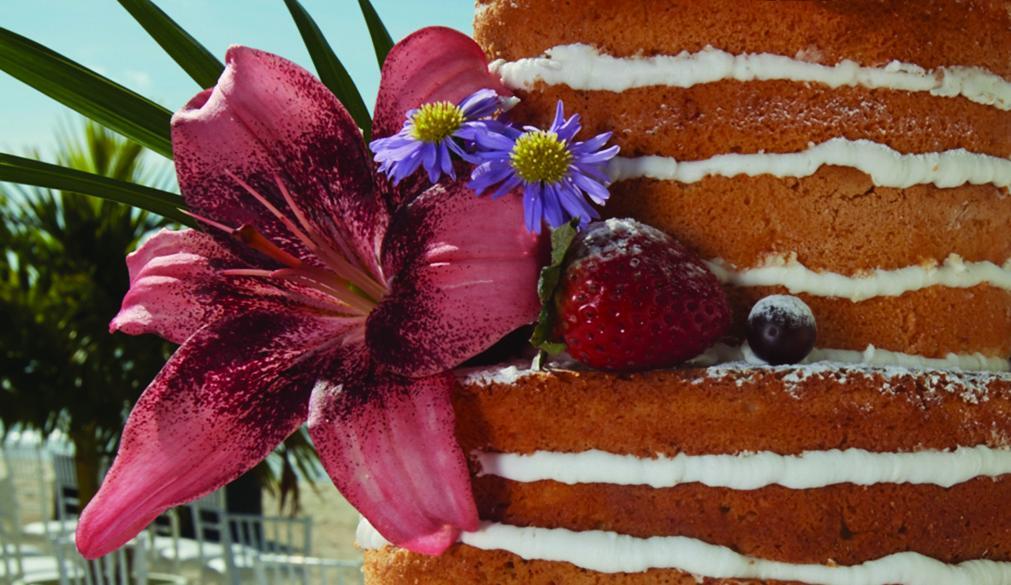 Aruba wedding trending naked cake